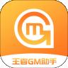 王者GM助手v8.2.3安卓最新版