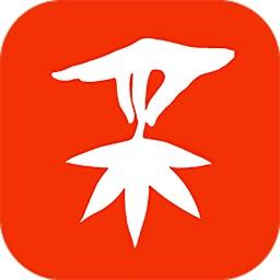 精采商城appv1.1.15 安卓版